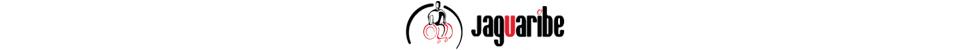 Banner-Marca-Jaguaribe