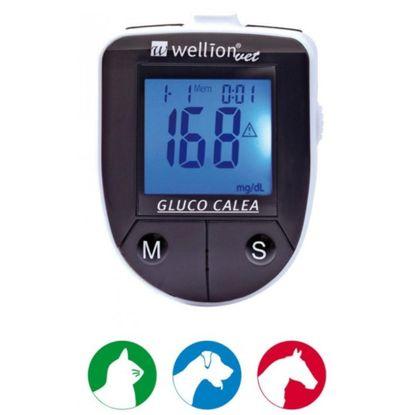 Monitor-de-Glicemia-Animal-Gluco-Calea-com-50un.